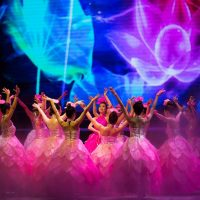 Find a buddy for a local show to feel the diversified beauty of Danang