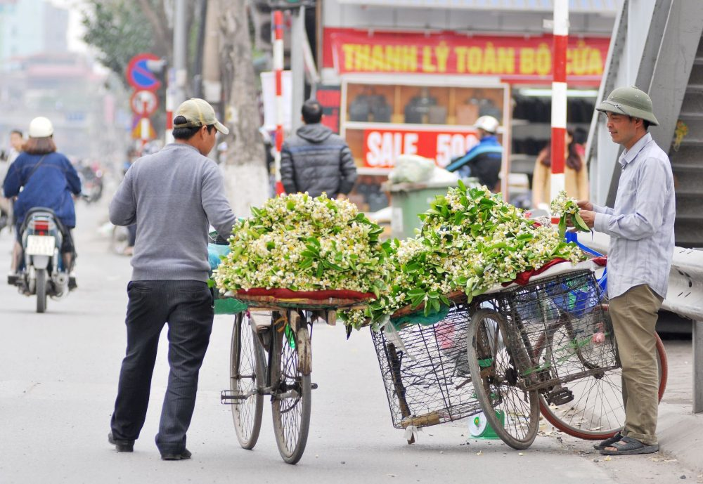 vietnam flower season in march