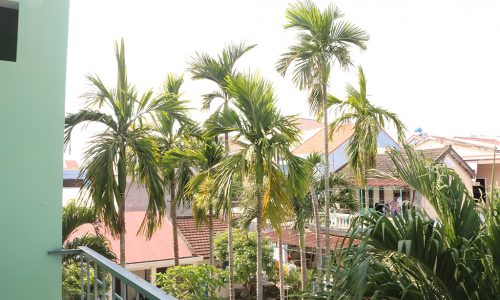 house in Hoian for rent