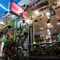 F Acoustic Café – a good live music coffee shop in Ho Chi Minh