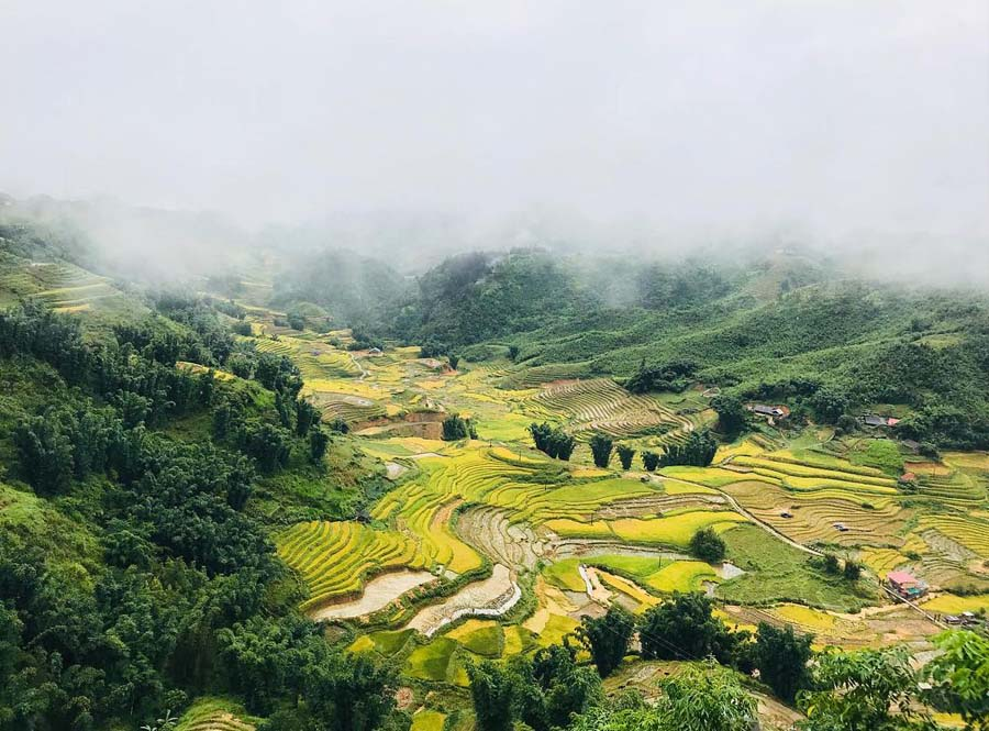 sapa in august